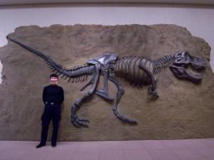 博物館用。T-Rexの化石。 発泡、FRP