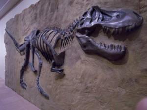 T-Rex。 大きすぎて部屋に入らないので、分割して再接合した後。