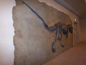 T-Rex。 出口へまっしぐら!